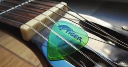 E-Gitarren Equipment kaufen